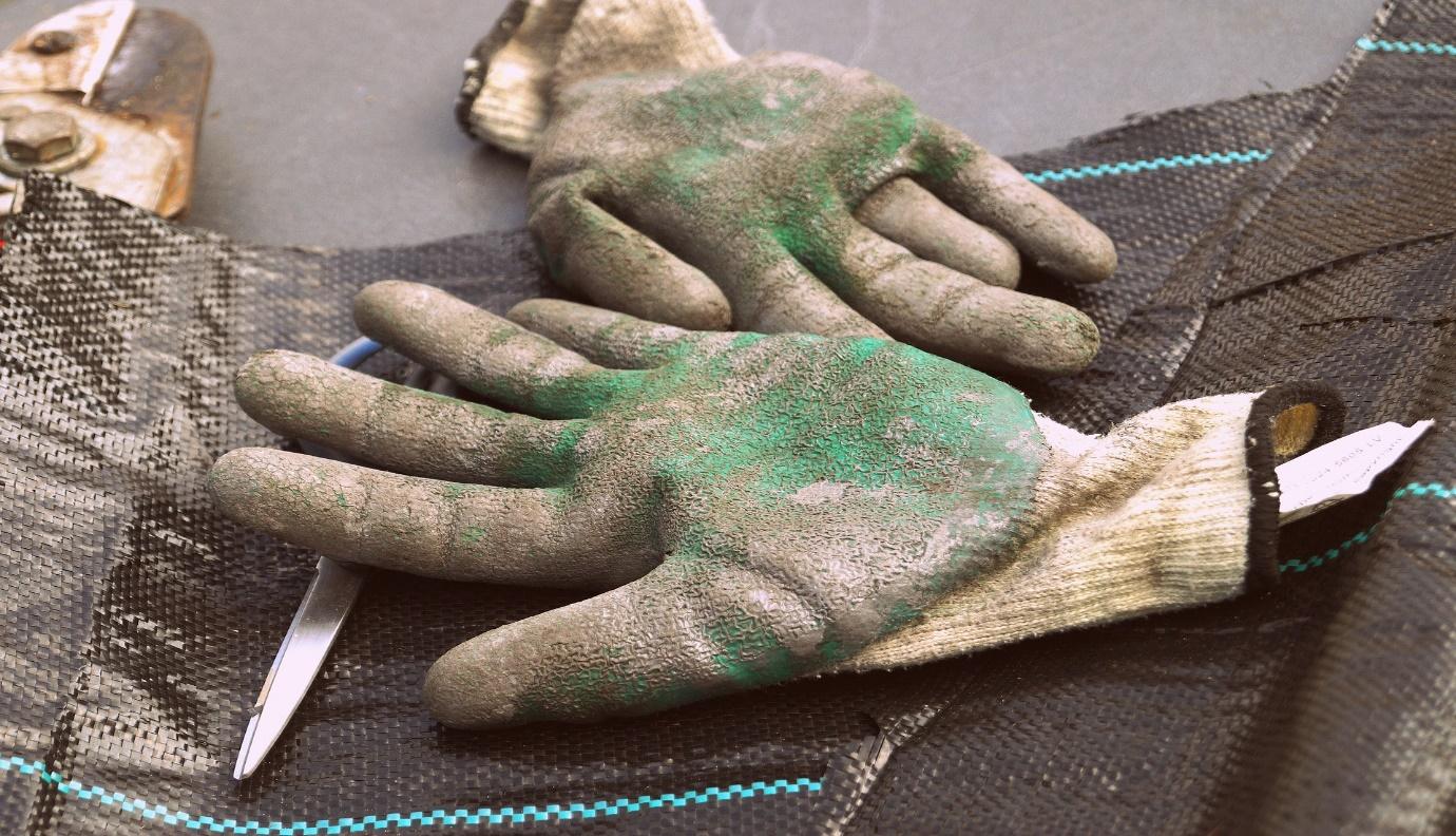 Autumn garden jobs: Tools