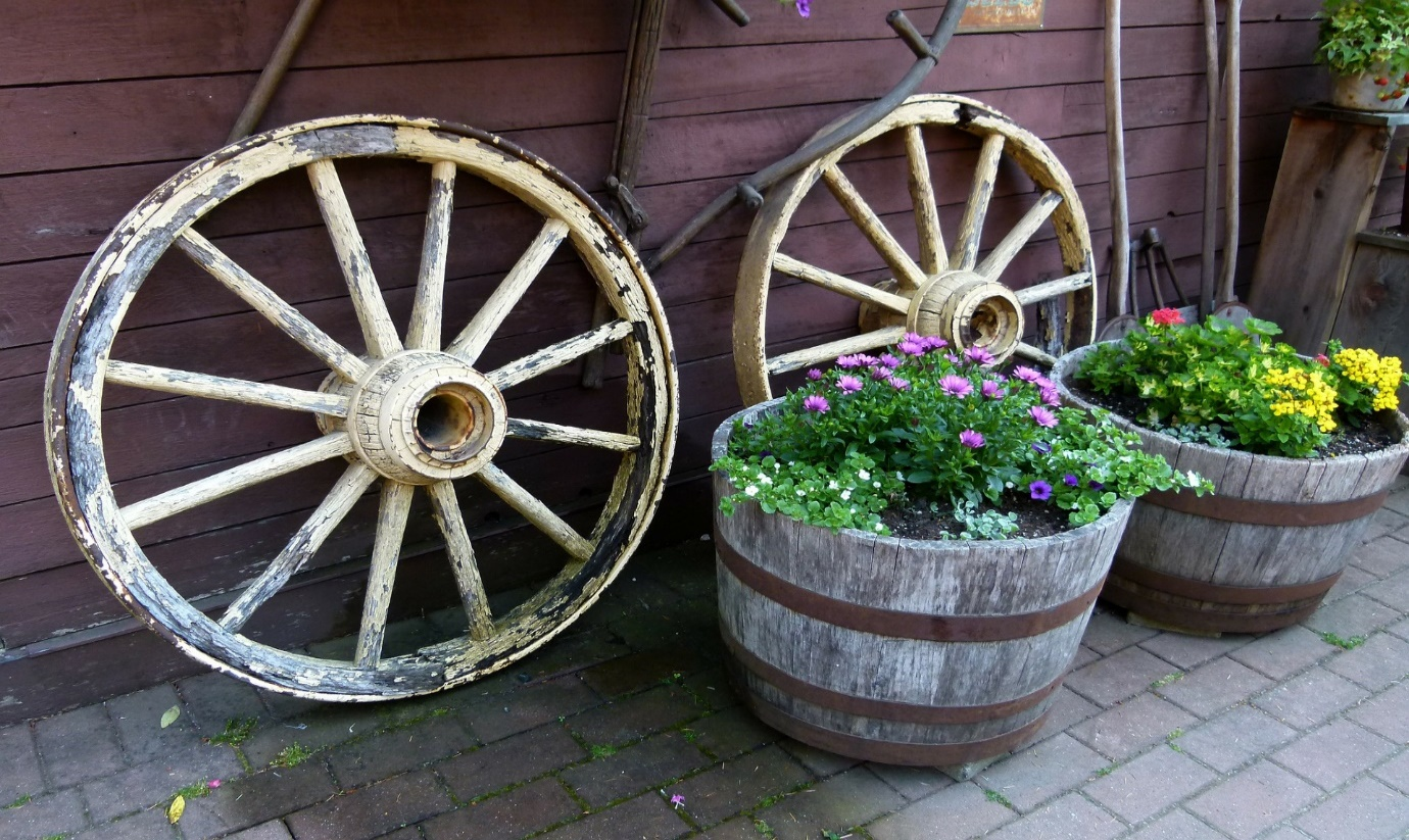 Autumn Garden jobs- Autumn plants