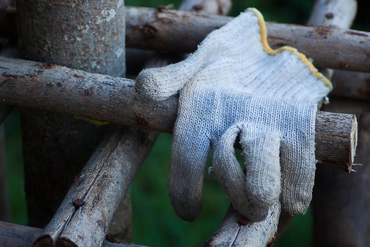 Autumn gardening jobs: Getting Prepared