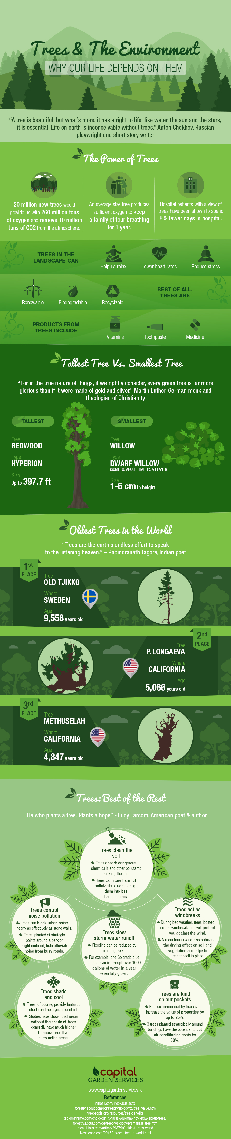 Trees & The Environment: Why Our Life Depends On Them Infographic