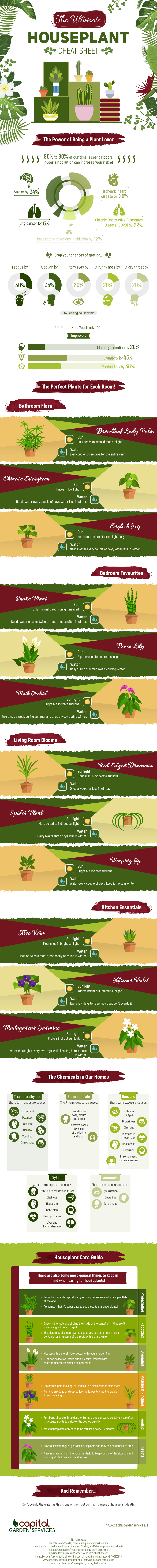 The Ultimate Houseplant Cheat Sheet Infographic